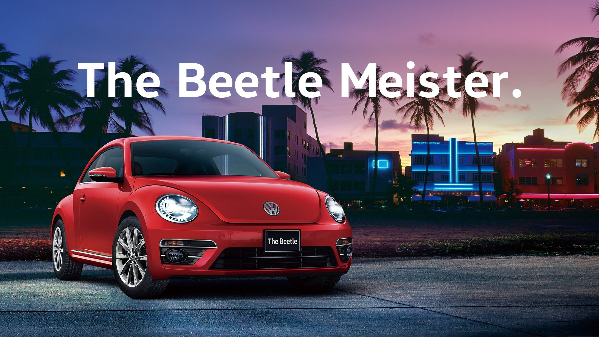 The Beetle Meister